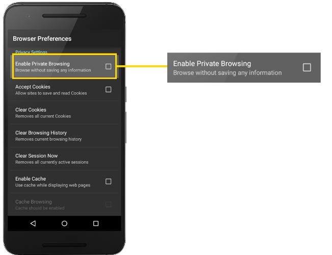enable-private-browsing1