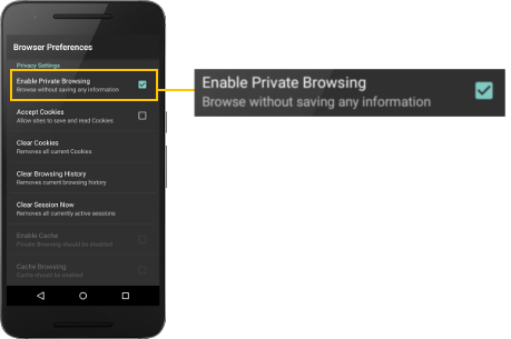 enable_private_browsing_surefox